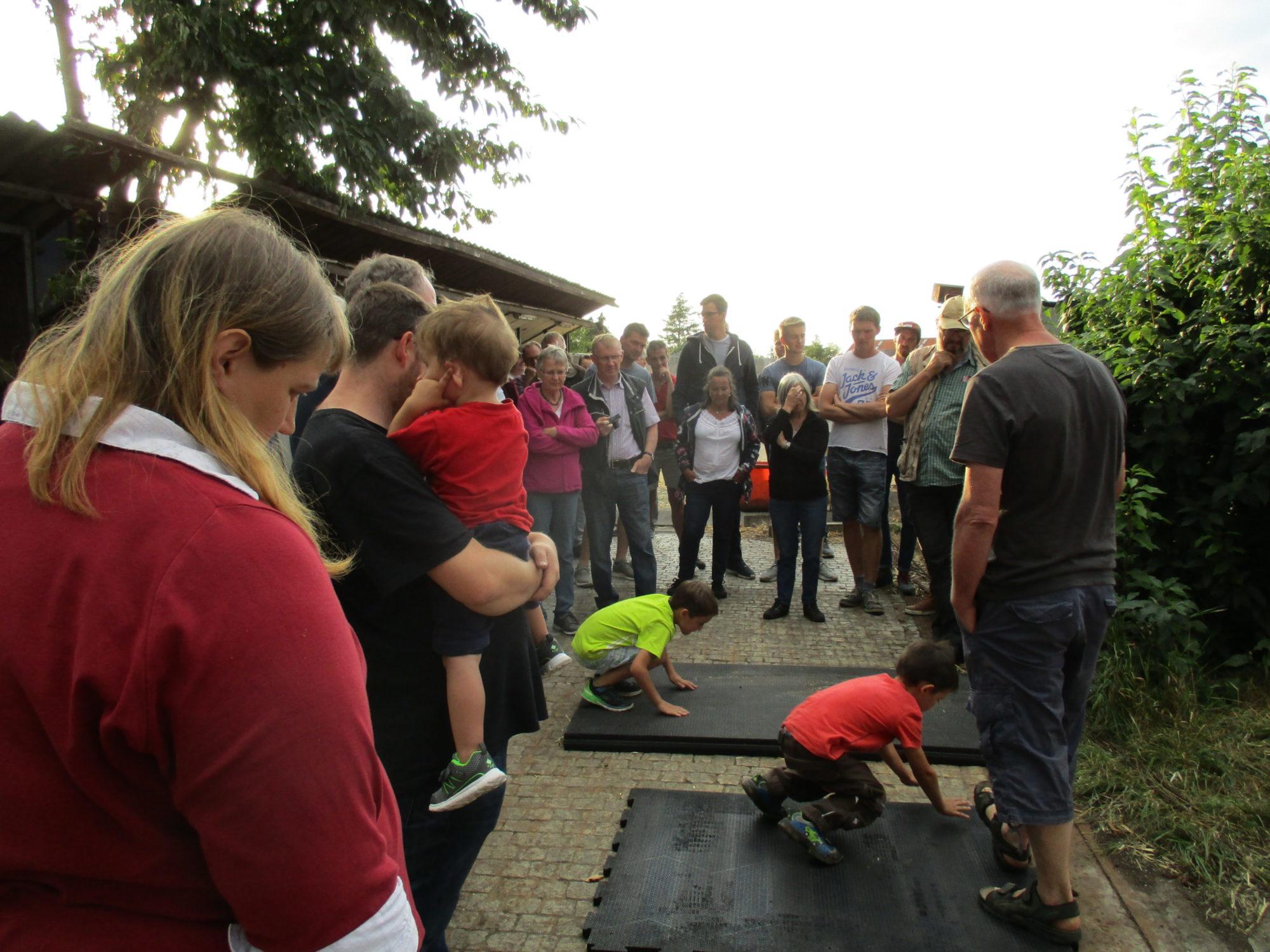 Bauernhof-6